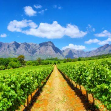 Que ver y hacer en Sudáfrica – 5 mejores lugares