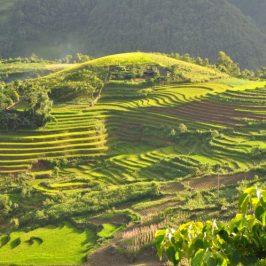 Que ver y hacer en Vietnam – 5 mejores lugares