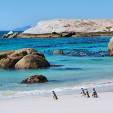 Viaje a Sudáfrica Patrimonio de la Humanidad