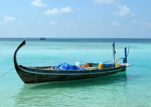 Barca para las excursiones