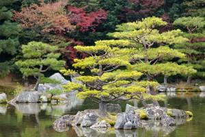 Jardin zen japonés