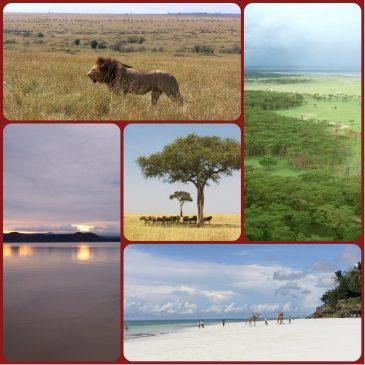 Consejos para viajes a Kenia