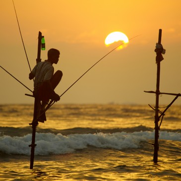 Consejos para viajes a Sri Lanka