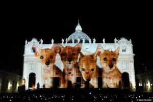 VaticanAnimals1