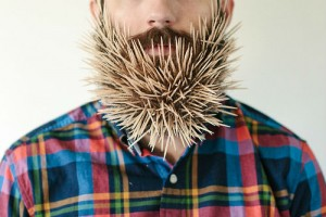 guy-sticks-stuff-in-beard-1