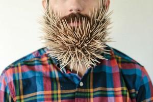 guy-sticks-stuff-in-beard-1