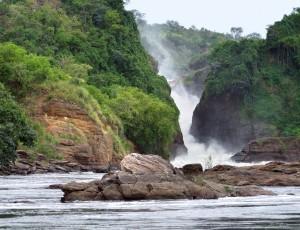 the Murchison Falls in Uganda (Africa)
