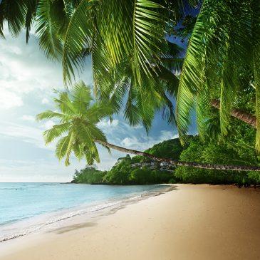 Consejos para viajes a Seychelles