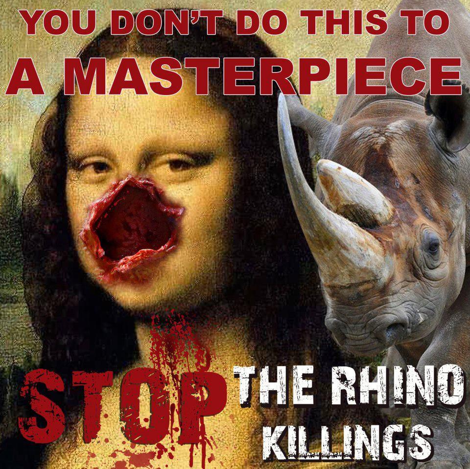 rhino save