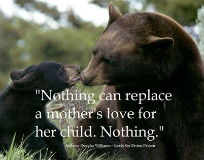nothing can replace a mother´s love