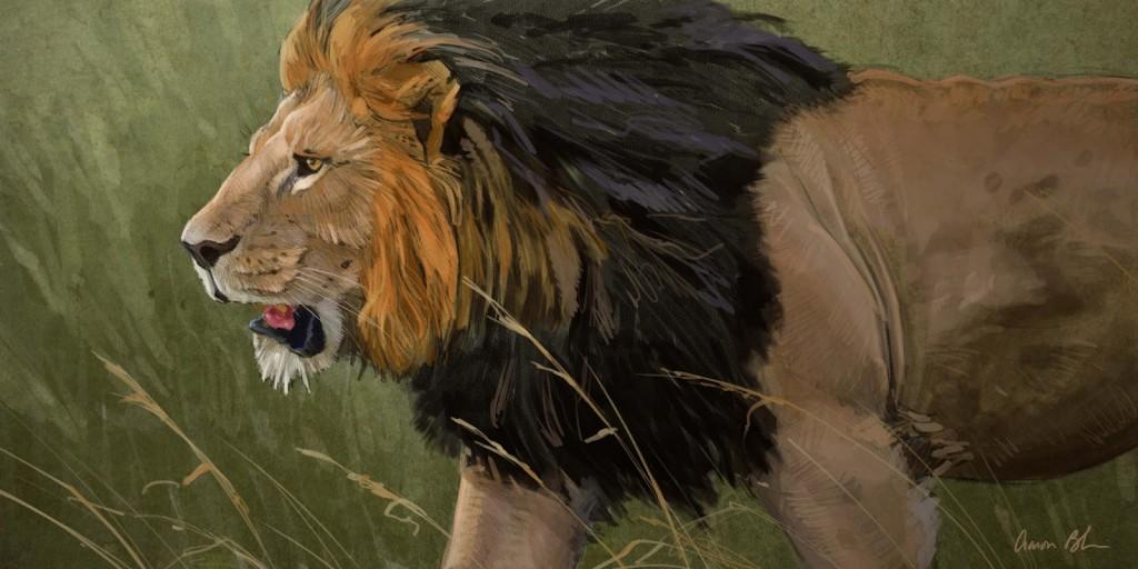 Lion+comp+1a