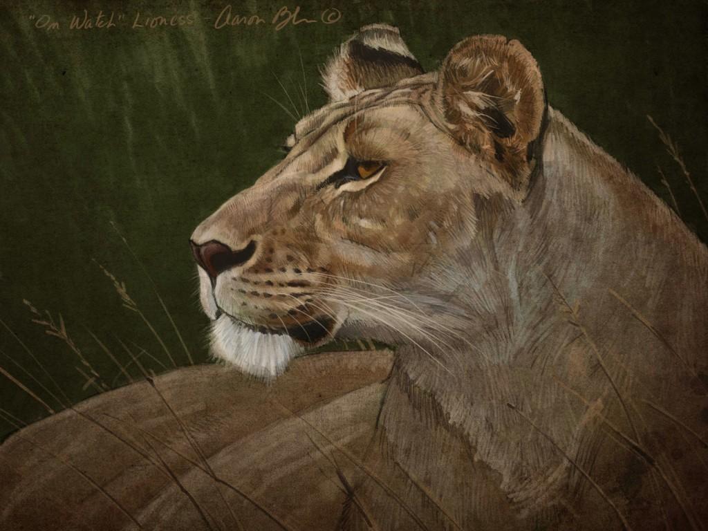 Lioness+2