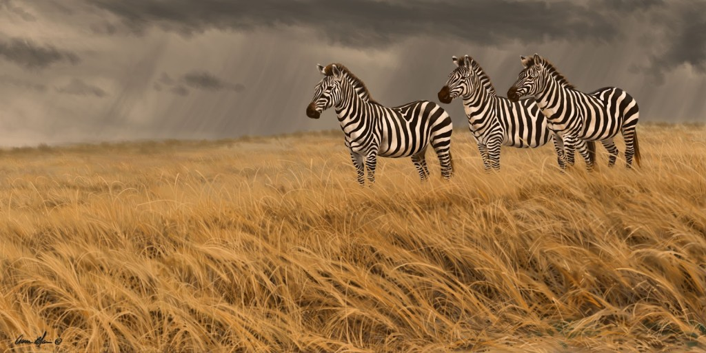 zebra+trio+print