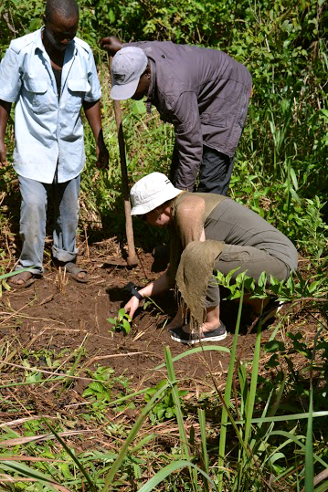 Soraya planting Mzizi tree in Bugoma forest