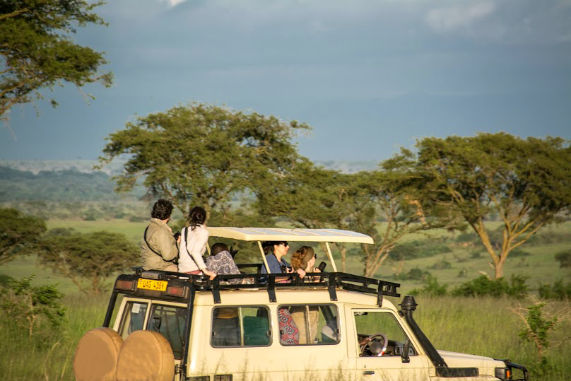 De safari.   On safari.  ©  Sven Gusten