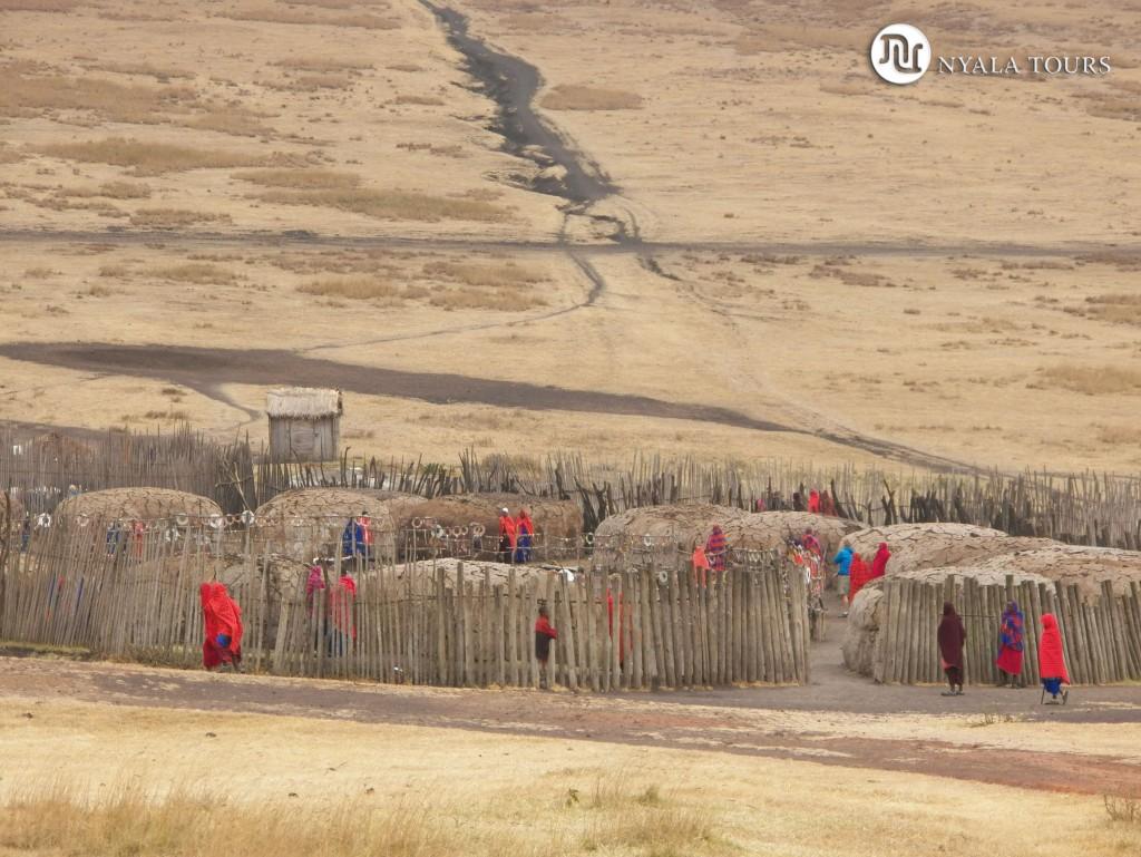 area-de-conversacion-de-ngorongoro-masai-village