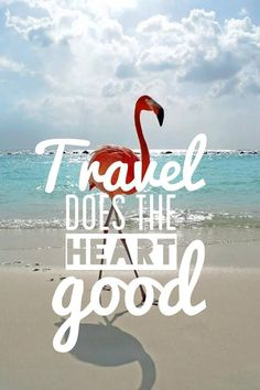 Viajar es bueno para la salud  |  Travel is good for the health