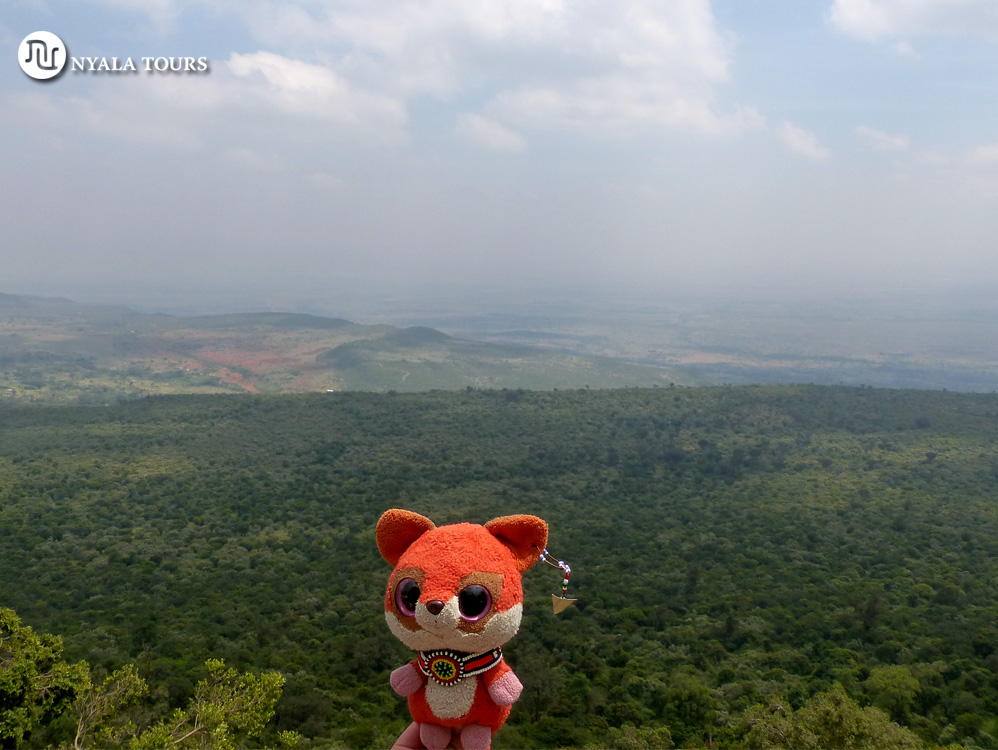 Ruby en el mirador de la Gran Falla Africana.  Ruby with the view of the Great  Rift  Valley.