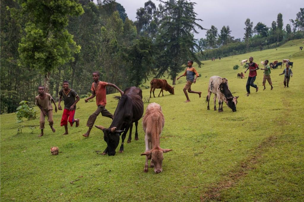Ethiopia  Etiopía