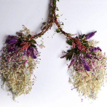 ARTE – ÓRGANOS HUMANOS HECHAS DE FLORES Y PLANTAS