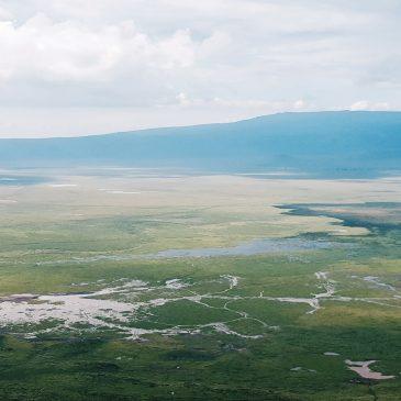Safari Tanzania – Recomendaciones – Recommendations
