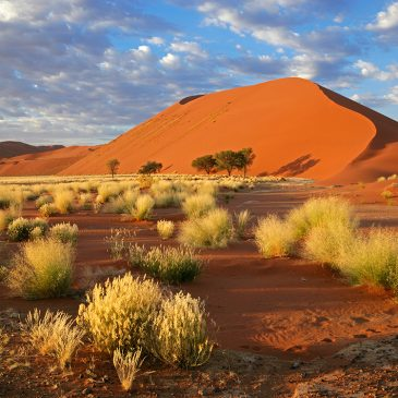 Opiniones – Viaje a Namibia
