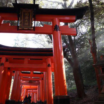 Viaje de novios a Japón y Bali