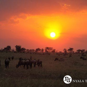 Viaje de novios a Tanzania
