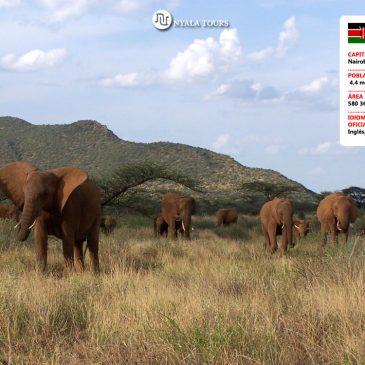 Guía Rápida a Kenia