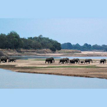 Viaje a Zambia